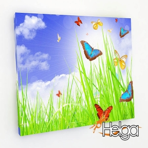 Бабочки на поляне Арт.3352