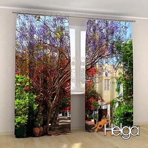 Цветущие деревья в Тель-Авиве арт.3664
