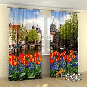 Тюльпаны в Амстердаме v2 арт.3908