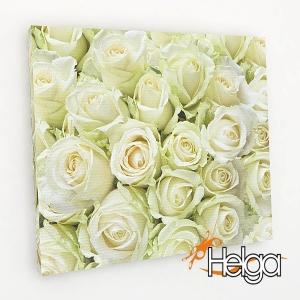 Белые розы v2 Арт.2688