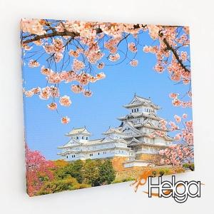 Замок Химэдзи Япония Арт.2148