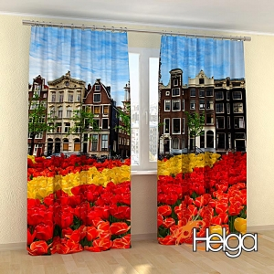 Тюльпаны в Амстердаме  арт.3873